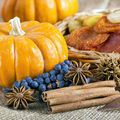 Pumpkin Spice Fragrance Oil - 2 oz