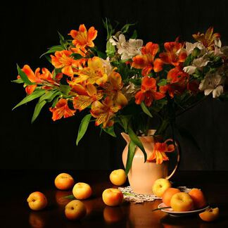 Apricot Freesia Fragrance Oil - Trial Size