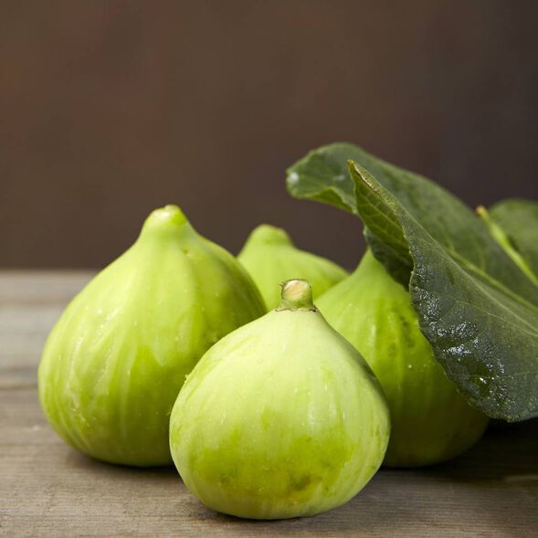 Green Fig Fragrance Oil