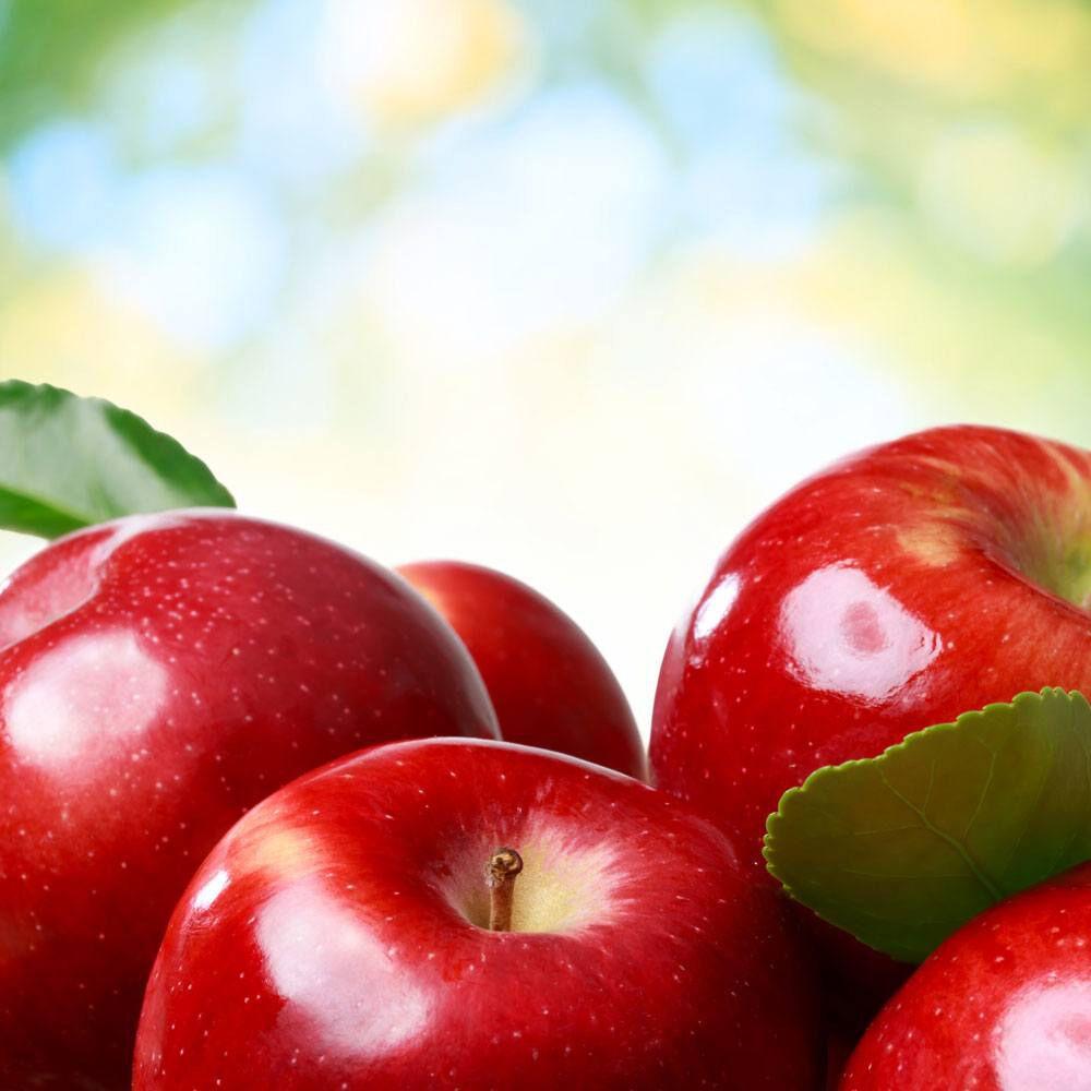 Summer Fling Fragrance Oil | Bramble Berry