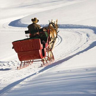 Sleigh Ride Fragrance Oil - Trial Size