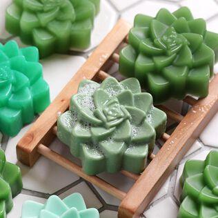 Succulent Soap Kit
