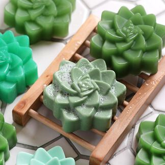 Succulent Melt and Pour Soap Kit