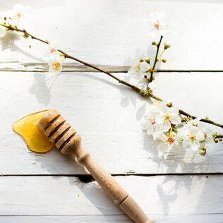 Ambrosia Blossom Fragrance Oil - Trial Size