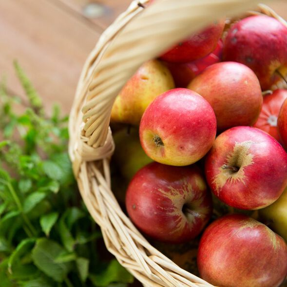Apple Sage Fragrance Oil - Trial Size