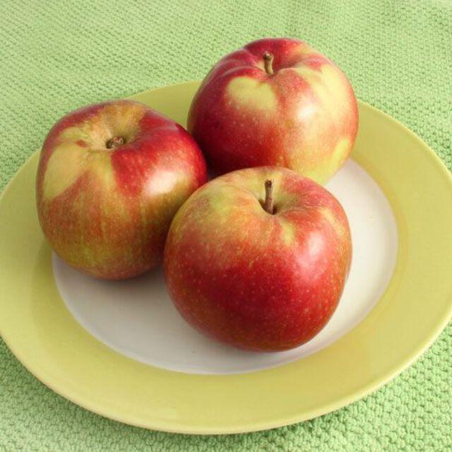 Apple Macintosh Candle & Soap Fragrance Oil