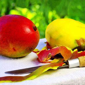 Mango Mango Fragrance Oil - 2 oz