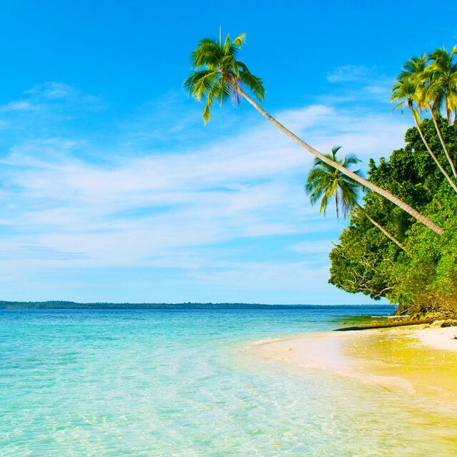 Island Escape Fragrance Oil - Trial Size