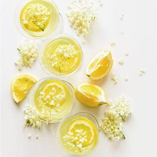 Lily Lemon Drop Fragrance Oil - 1.75 oz