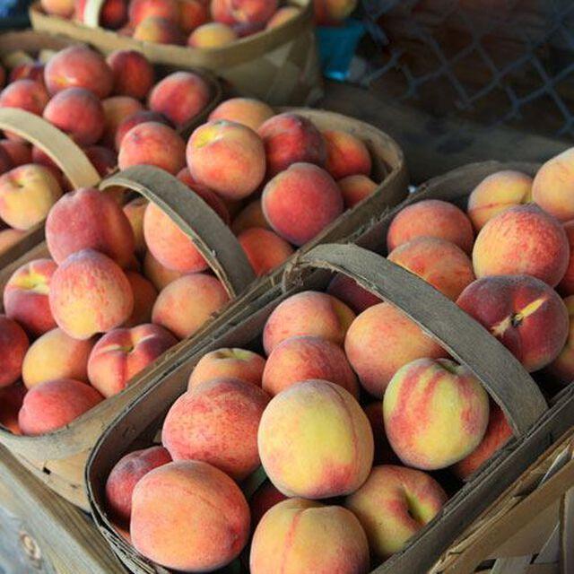 Southern Peach Fragrance Oil