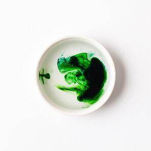 Emerald Lab Color - small