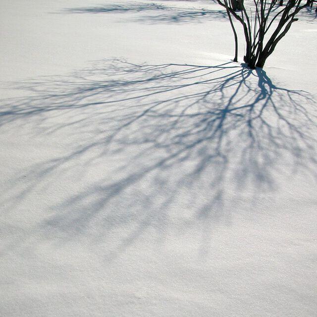 Fresh Snow Fragrance Oil