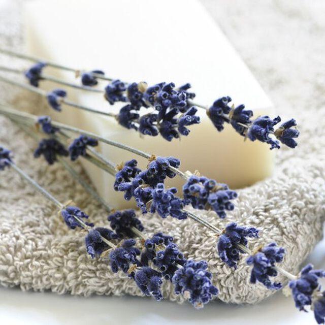 Relaxing Fragrance Oil