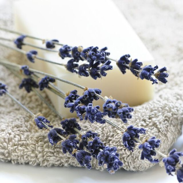 Relaxing Fragrance Oil - Trial Size