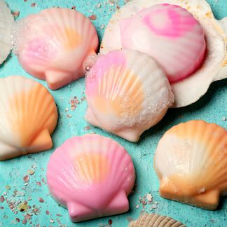 Seashell Soap Kit - Domestic