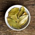 Tobacco & Bay Leaf Fragrance Oil Sample size