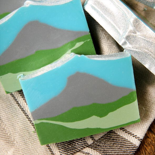 Evergreen Mountain Soap Project