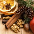Christmas Spice Fragrance Oil - Trial Size