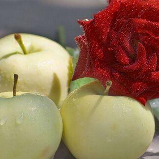 Crisp Apple Rose Fragrance Oil - Trial Size