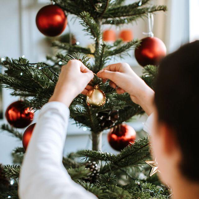 Christmas Cheer Fragrance Oil Sampler Kit