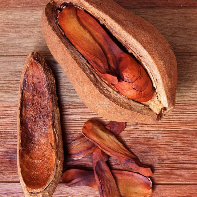 Spiced Mahogany Fragrance Oil
