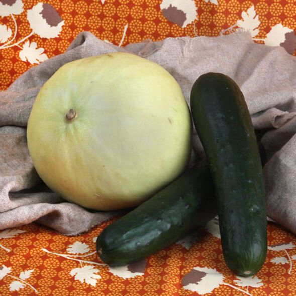DISCONTINUED - Honeydew Melon Fragrance Oil