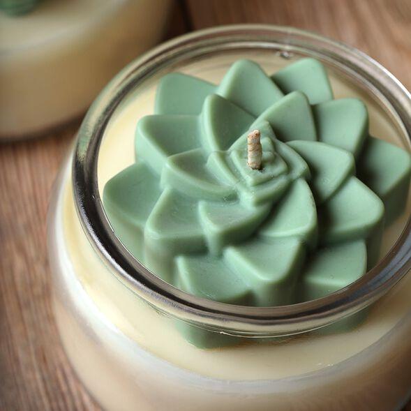 Succulent Candle Project