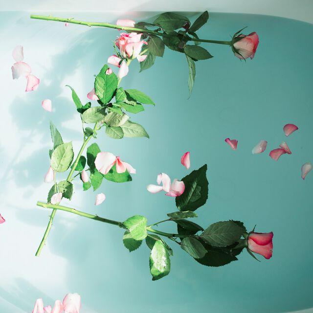 Wild Rose Fragrance Oil - 2 oz