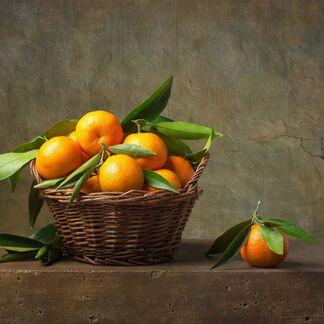 Tangerine Essential Oil - 1.5 oz