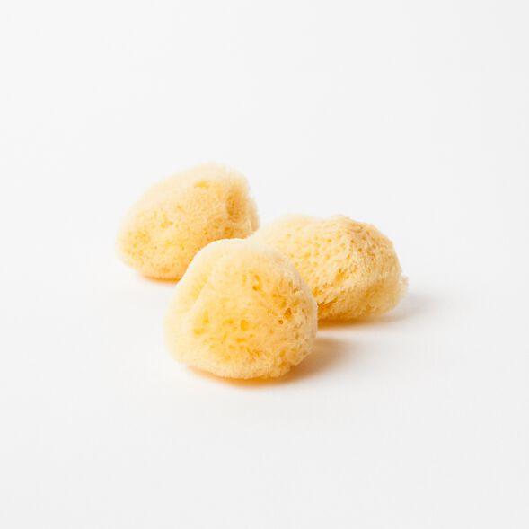 Sea Sponge - Silk - 1 Sponge