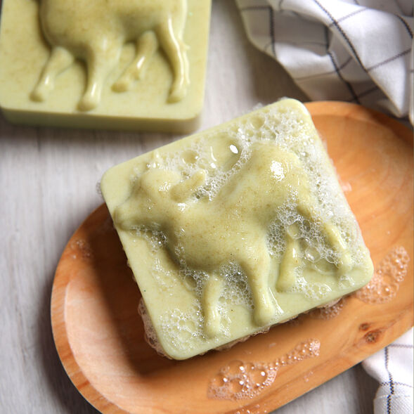 Goat Milk and Alfalfa Soap Project