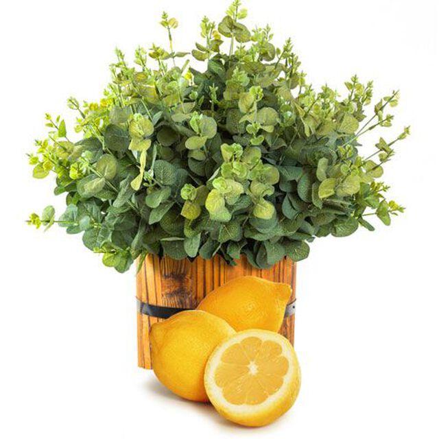 Lemon Eucalyptus Essential Oil