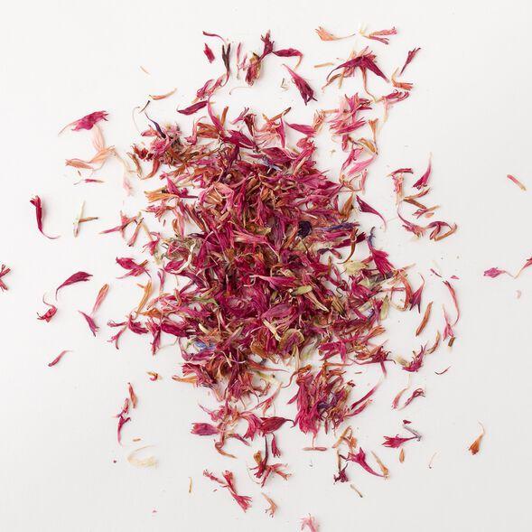 Pink Cornflower Petals