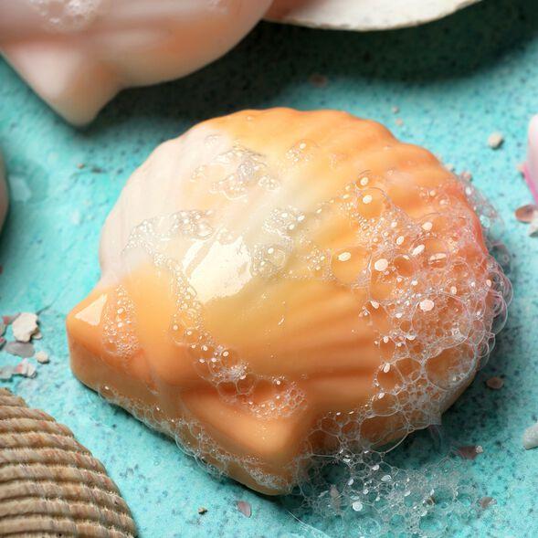 Seashell Soap Kit