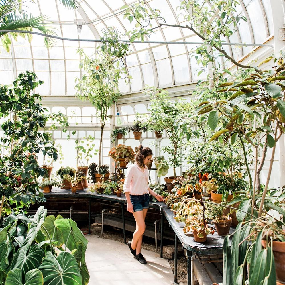 greenhouse fragrance oil | Bramble Berry